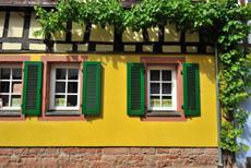 Reben an einem Fachwerkhaus in Annweiler in der Pfalz | © World travel images/Fotolia.com